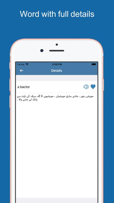 Urdu Dictionary & Translator screenshot three