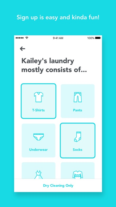 My Laundry screenshot two