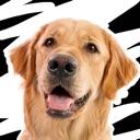 Linkin Bark – Dog Stickers