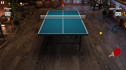 Virtual Table Tennis ScreenShot0