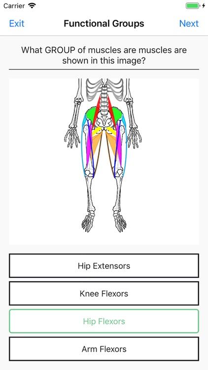Simple Lines Anatomy screenshot-5