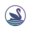 SYNC Financial Technology Ltd. - Swanest - Portfolio Tracker  artwork