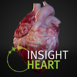 ‎INSIGHT HEART