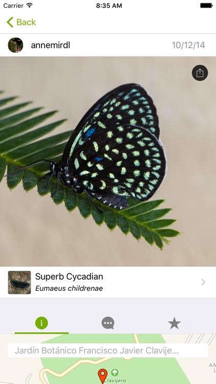iNaturalist screenshot-0