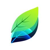 Plant Identification icon