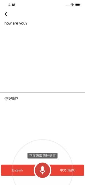 Google 翻译 Screenshot
