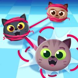 Knotty Cats