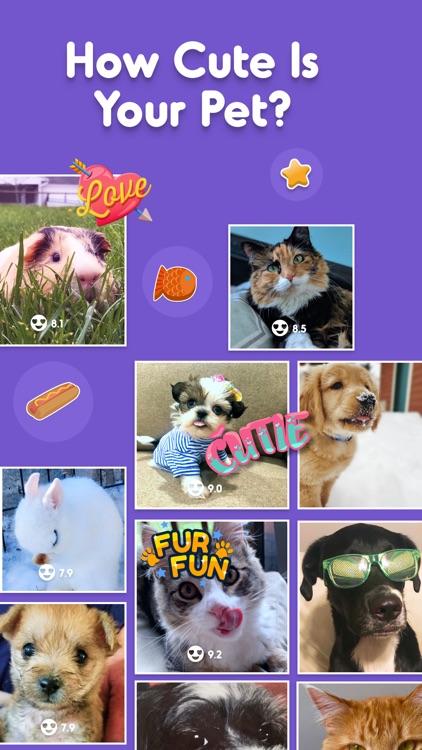 Pet Parade screenshot-0