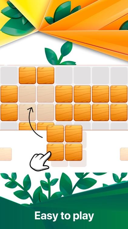 Block Puzzle - classic bricks screenshot-0