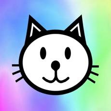Activities of Katzen