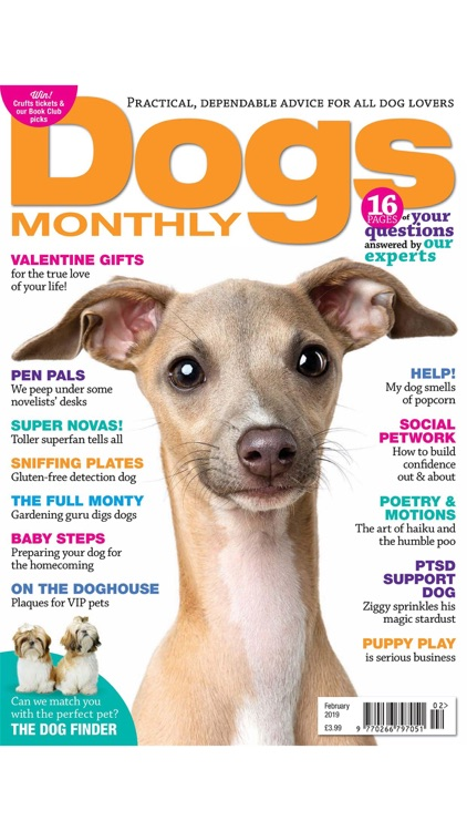 Dogs Monthly Magazine screenshot-2
