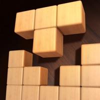 Wood Block - Challenge Brain