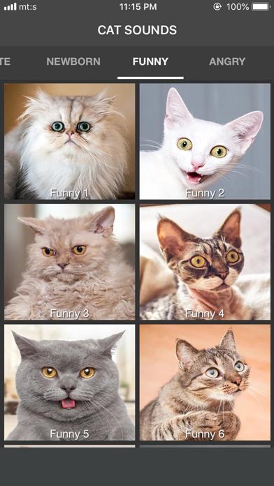 Cat Sounds - ColecciónCaptura de pantalla de5