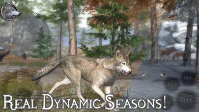 Ultimate Wolf Simulator 2 screenshot 4
