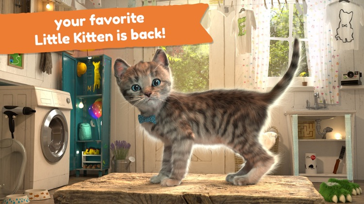 Little Kitten Adventure Games screenshot-0