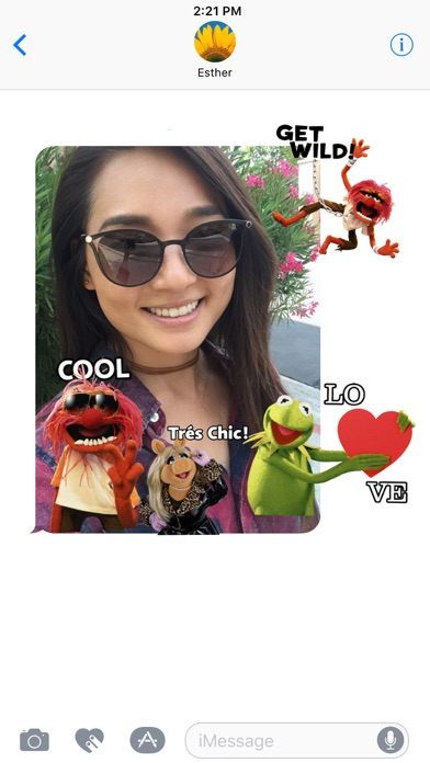Disney Stickers: Muppets