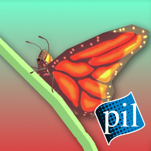 PI VR Insects