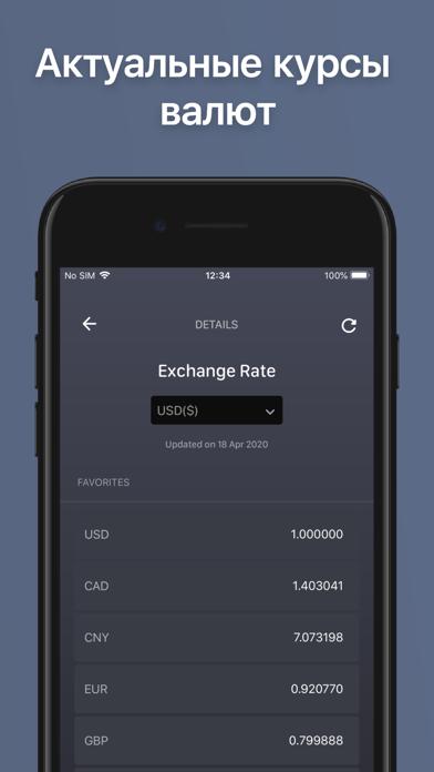 Финансовый учет: BalanceViewerСкриншоты 8