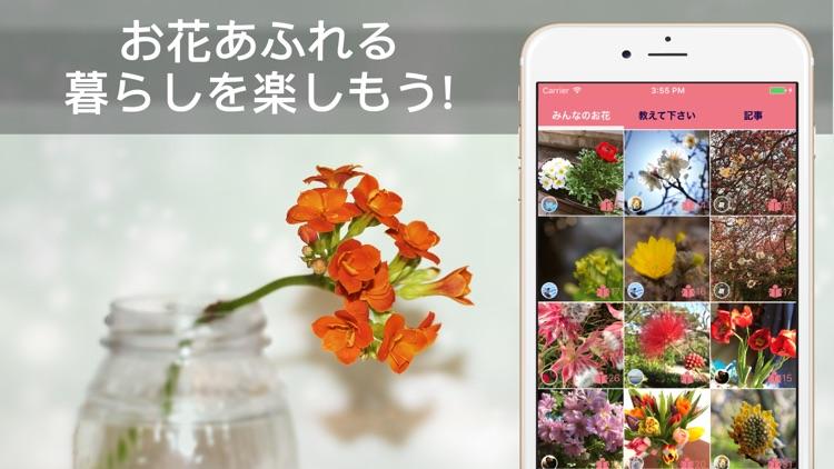 花・植物好きが集まる写真共有・図鑑アプリ, FLOWERY screenshot-4