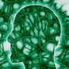 Neuroscience Events