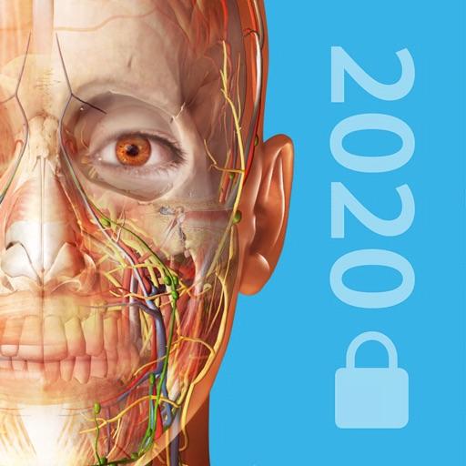 2020 Atlas Perpetual icon