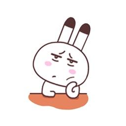 Cute Rabbit 4