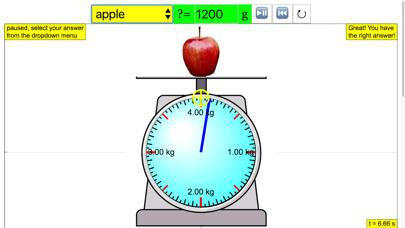 Read Weighing Scale screenshot four