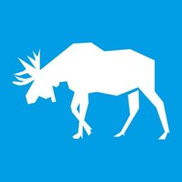 Iron Moose Password Generator