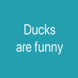 Ducks are funny