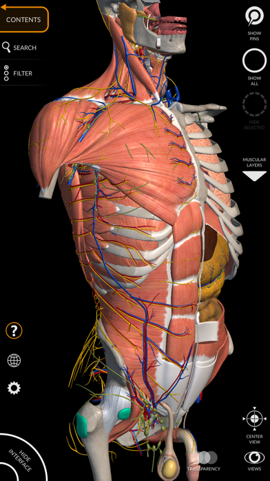 Anatomy 3D Atlas Screenshot