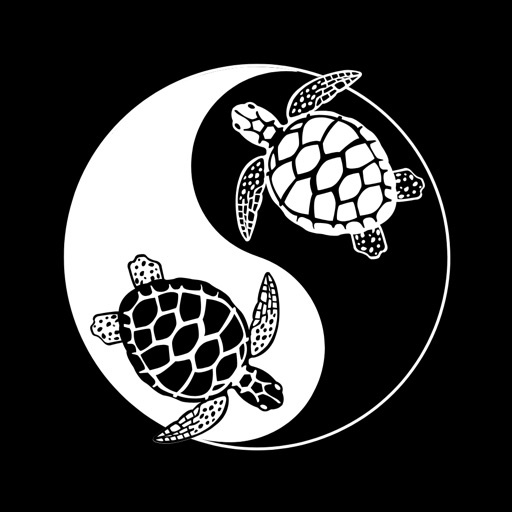 Turtle Traveller
