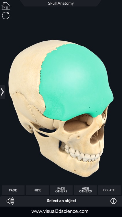 My Skull Anatomy screenshot-3