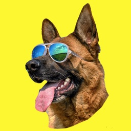 German Shepherd GSD Fun Emoji