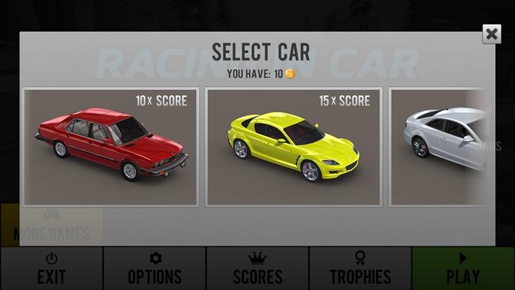 Racing in Car screenshot-4