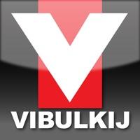 Codes for Vibulkij Hack