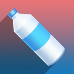 Bottle Flip...