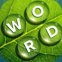 Codes for Word Vista: Puzzle of Bliss Hack