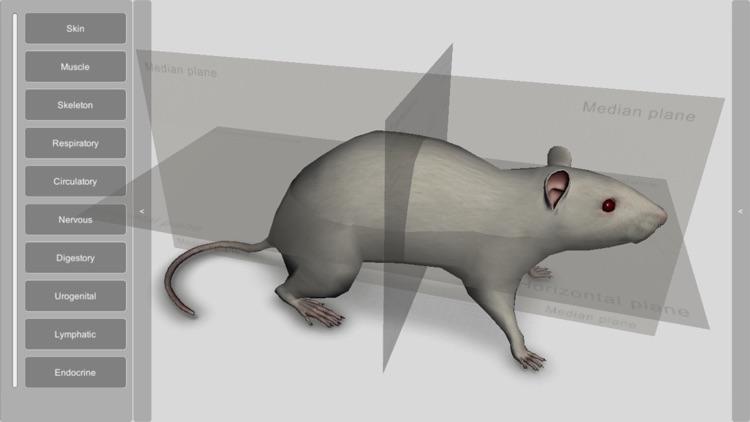 3D Rat Anatomy screenshot-0