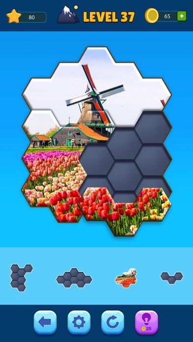 Hexa Jigsaw Puzzle ® screenshot 3