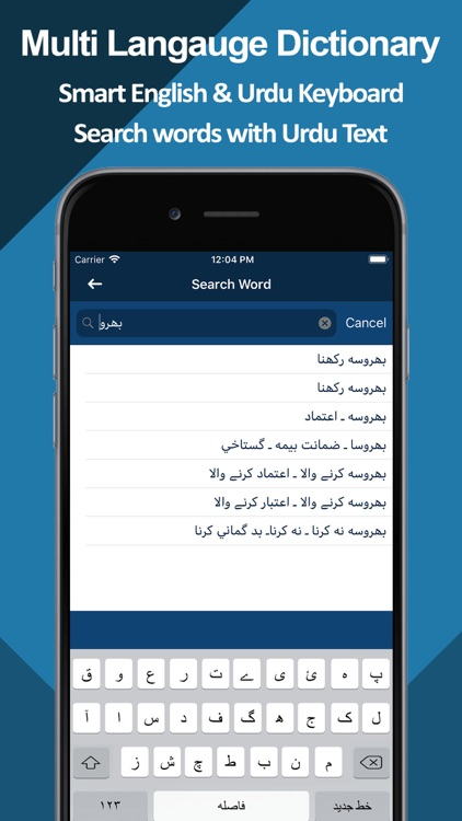 Multilingual Dictionary Pro screenshot-3