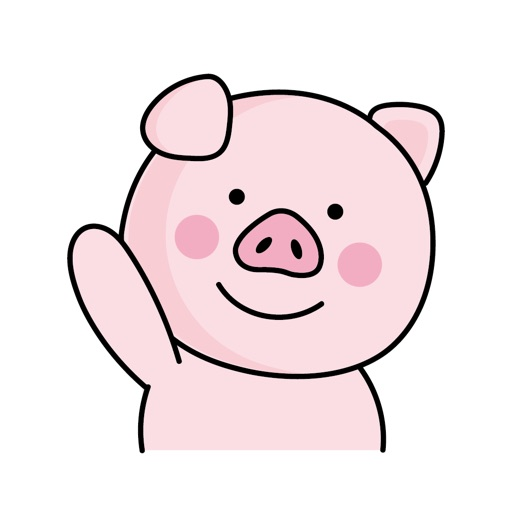 Lovely Pink Pig