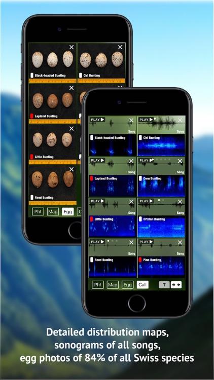 Birds of CH -Photo Guide screenshot-7