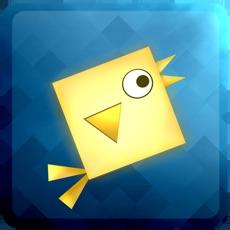 Activities of Geometry: Square Birds