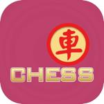 Chess Chinese