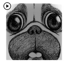 Animated Pug Dog PugMoji