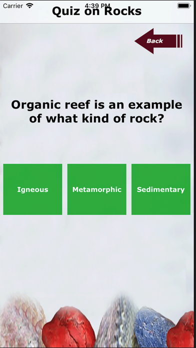 Kidz Learn Rocks screenshot 5