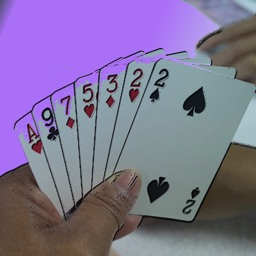 Pesten With Cards