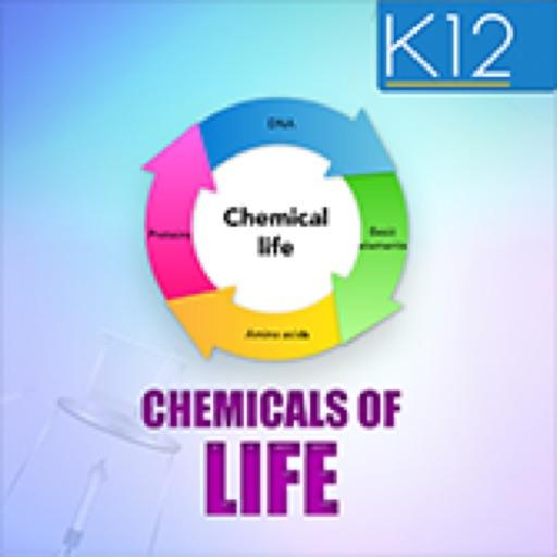 Chemical Basis of Life