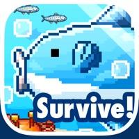 Codes for Survive! Mola Mola! Hack