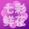 七彩鲜花-鲜花速递第一品牌